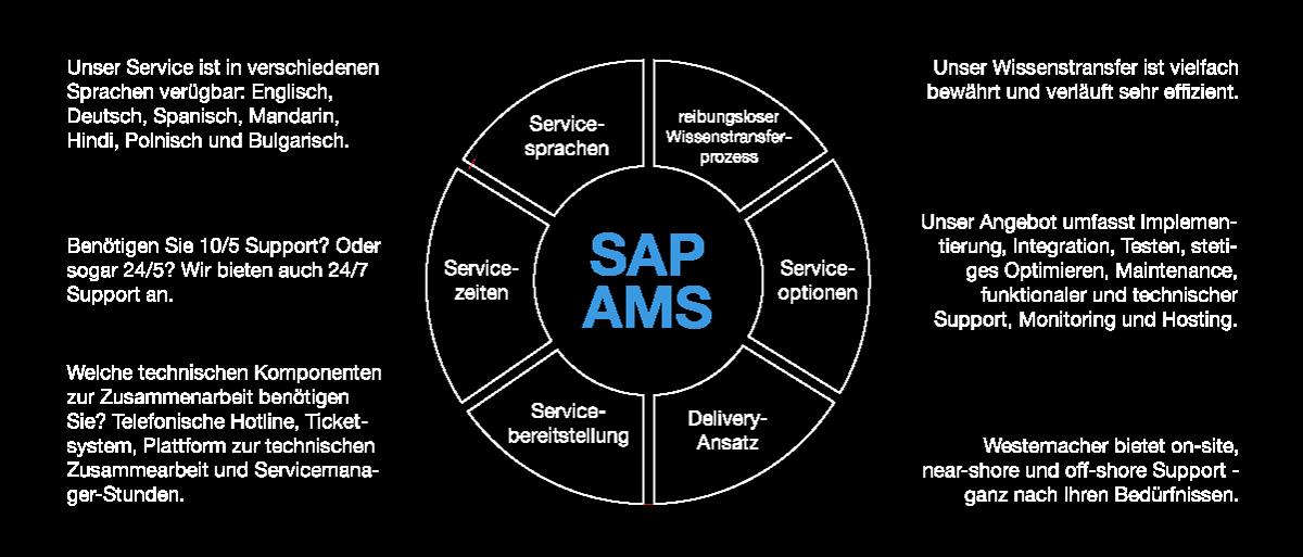 SAP AMS. Individuelles Serviceangebot mit Westernacher Consulting.