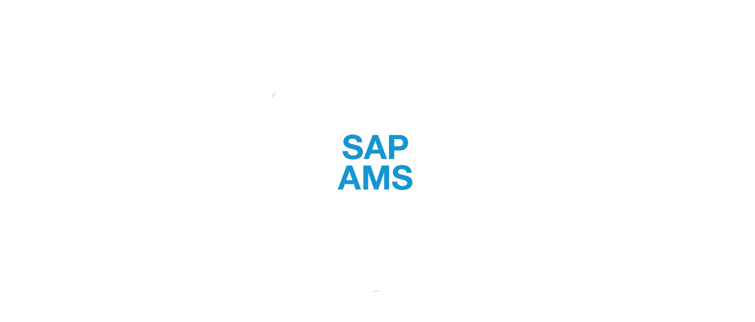 grafik_sap-ams_new_EN